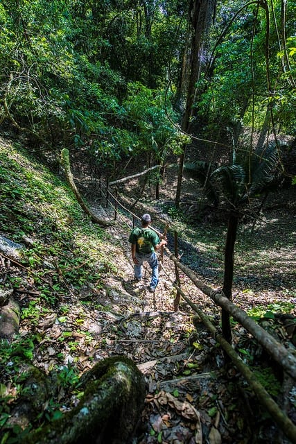 Worker at El Pilar in the jungle