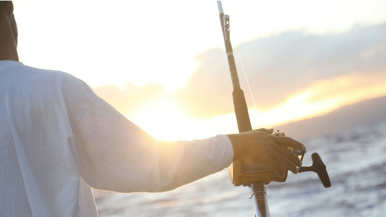 A guide to some of the best fishing in the caribbean belize for Best deep sea fishing