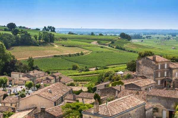 saint emilion france vinyard