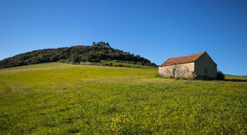 farmhouse in portugal, a small stone house in th emiddle of a green field and blue skies
