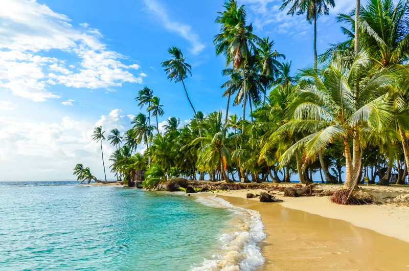 an empty beach san blas panama