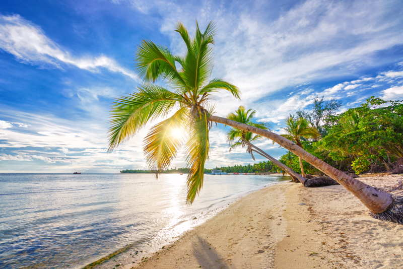 dominican republic beach in the morning