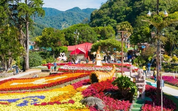Boquete flower show Panama. Boquete is one of the most famous expat mountain towns in Panama