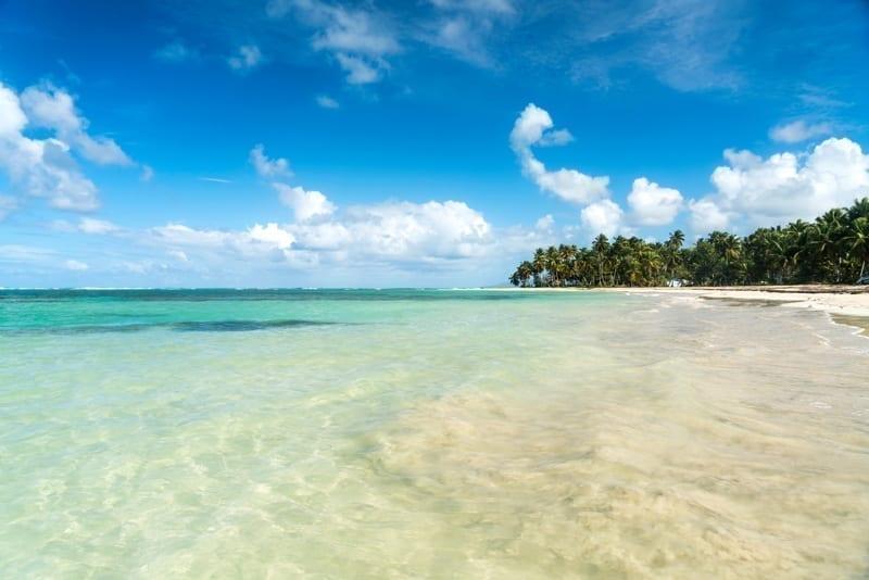 Palm fringed sandy beach of El Portillo, Las Terrenas