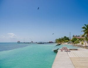 Belize Caye Caulker green sea