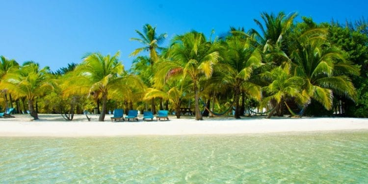 white sand beach in belize tropical