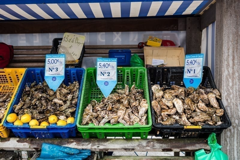 Crates with fresh oysters for sale.