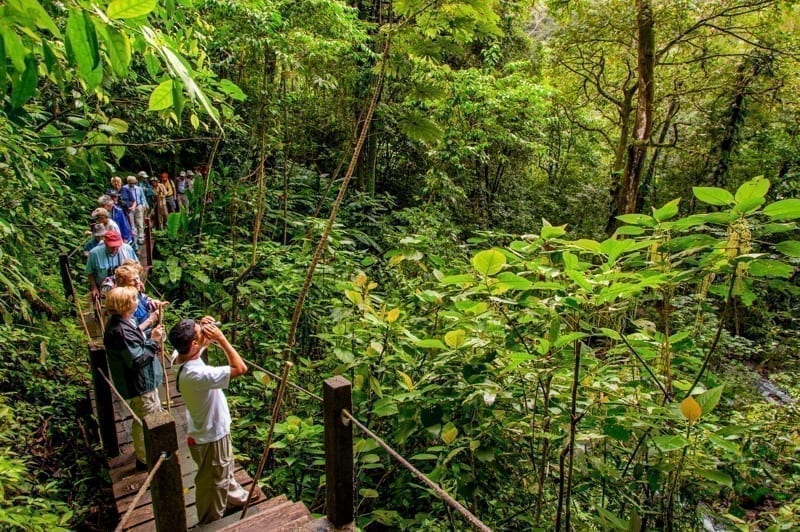 Tourists hiking in the rainforest at the El Chorro Macho Trails in El Valle de Anton, Panama.