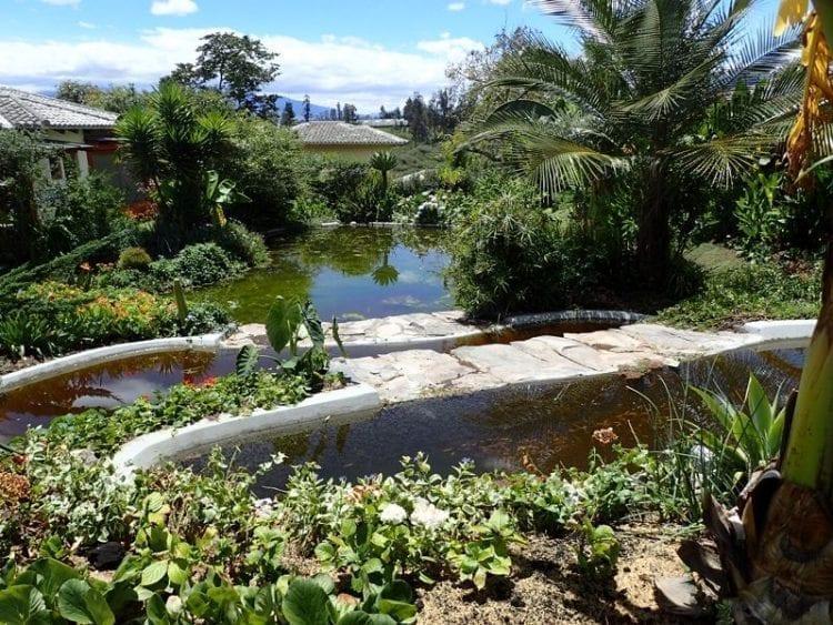 cascading pool in ecuador