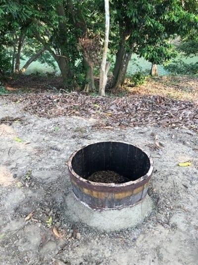 fire pit belize