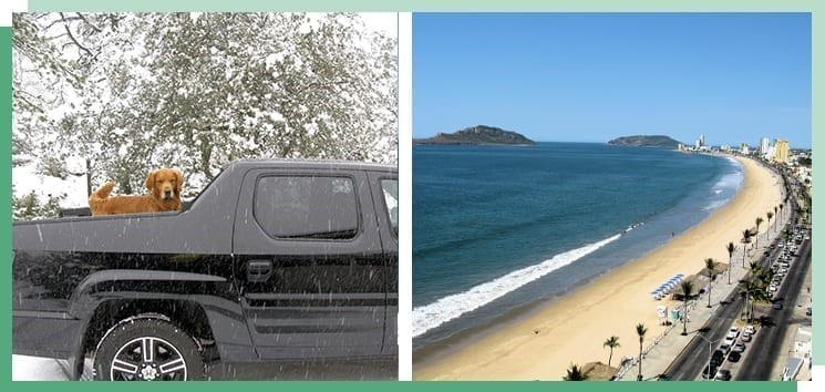 pickup truck in snow or beach
