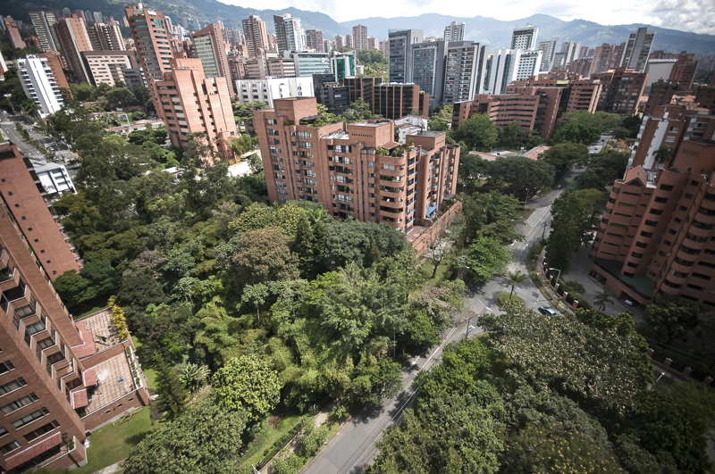 medellin apartment view trees buildings