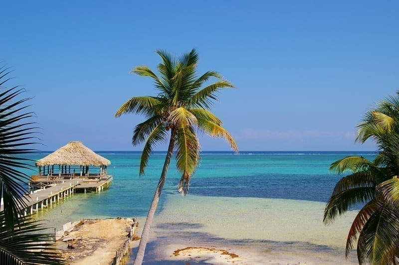 Palm trees and dock in Ambergris Caye, a paradise in Belize