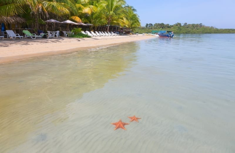 Bocas Del Toro, Panama. Deserted Starfish beach on the archipelago Bocas del Toro, Panama.