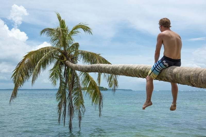 Young man sitting on a palm tree on a holiday to the Caribbean islands of Panama.
