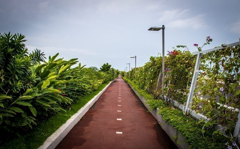 Bicycle lane and a jogging path surrounded by green in Cinta Costera - Panama CitYy, Panama.