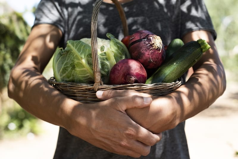Man with a rustic basket full of vegetables freshly collected