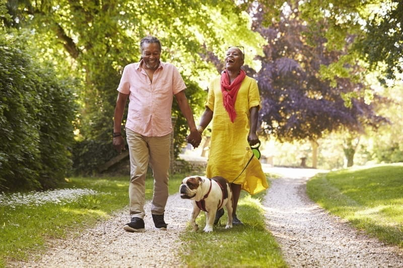 Senior Couple Walking With Pet Bulldog