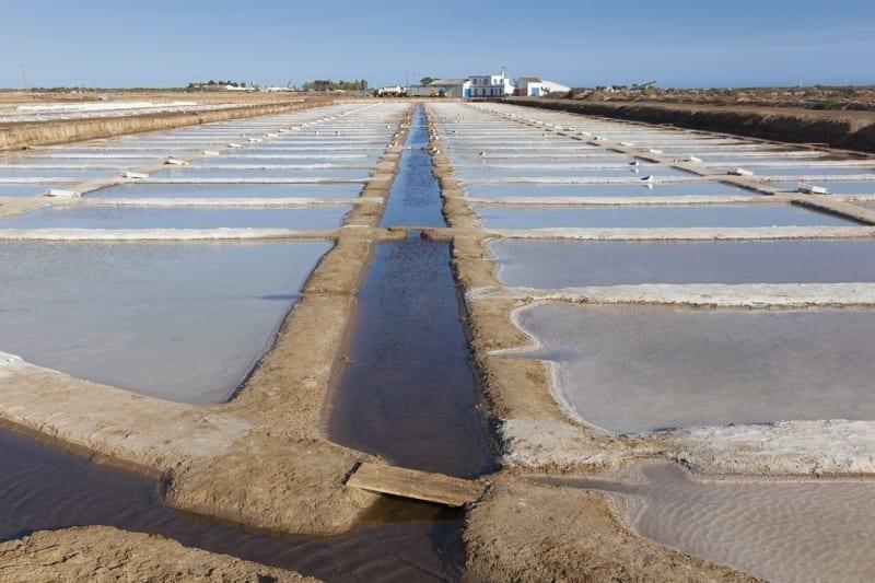 Salt Pans, Tavira, Portugal