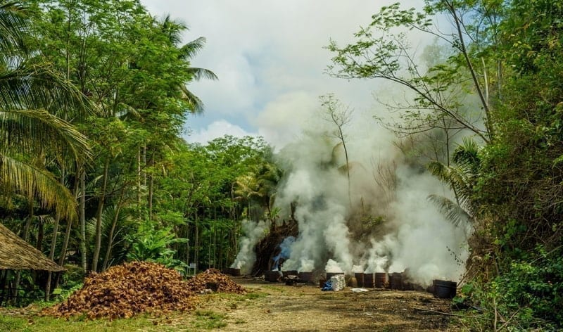 Local farmers burning loads of dried coconut shells in barrels in Indonesia