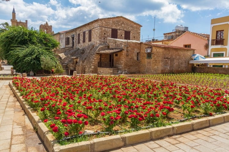 View of red flowers in a square in the walled old medieval city of Famagusta, Cyprus