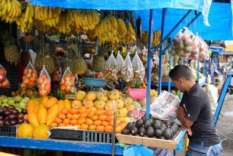 A fruit market with bananas, pineapples, papayas, avocados, tangerines, mangos and more