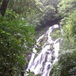 Cascade in Panama